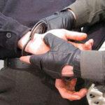 Задержаны подозреваемые в ограблении салона сотовой связи в Климовске