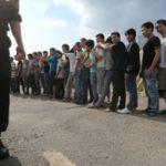 Столичная полиция подвела первые итоги спецоперации «Мигрант»