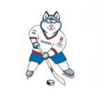 В Москве началась продажа билетов на хоккейный чемпионат мира 2016 года