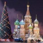 18 декабря в Москву прибудет главная елка страны