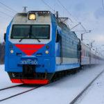 В Новогиреево, спасая собаку, под поездом погиб сотрудник спецназа