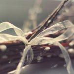 «Свечечки да вербочки…»: православные верующие празднуют Вербное воскресенье