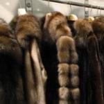 В столице задержаны лица, подозреваемые в краже меховых изделий почти на 200 000 долларов
