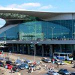 Мертвая лиса стала причиной задержки приземления самолета в «Шереметьево»