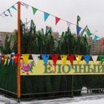Новый год все ближе! 20 декабря в Москве начали работу елочные базары.