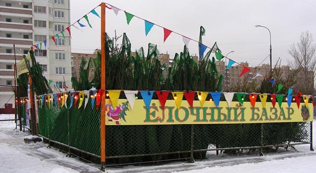 Новогодние елочные рынки в Балашихе проинспектировал мэр города