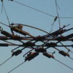 На севере Москвы повреждена контактная сеть троллейбусов