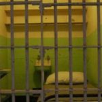 В подмосковном Пушкино две жительницы Башкирии задушили собутыльника шнуром от зарядки