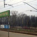 На ЖД-станции под Истрой поезд сбил женщину