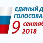 Выборы мэра Москвы: невысокая явка и высокая лояльность к Собянину