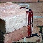 Задержан подозреваемый в жестоком убийстве девушки в Подмосковье