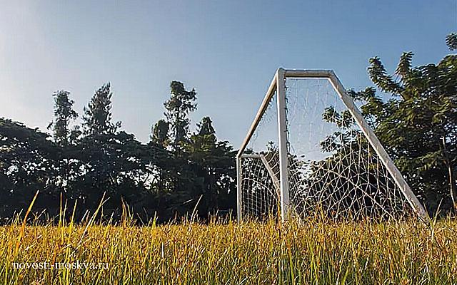 В Зеленограде парня насмерть придавило футбольными воротами