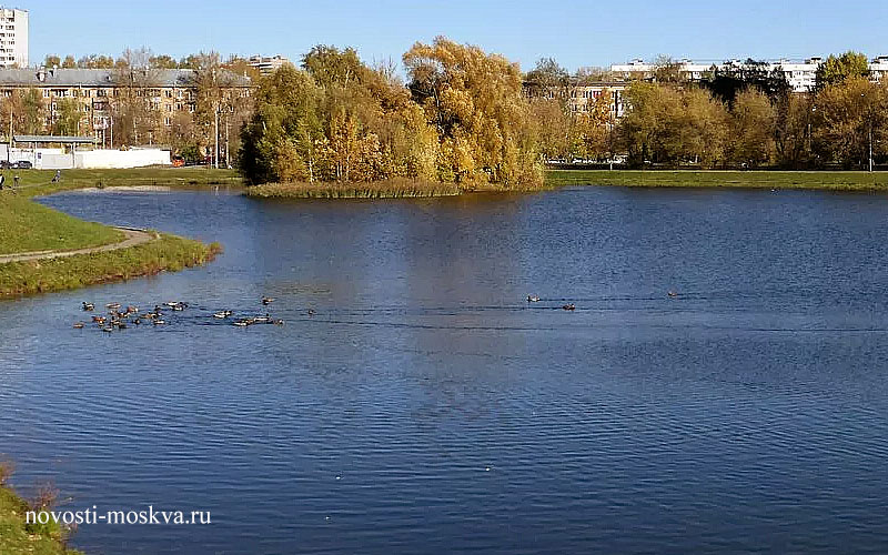 Коммунальщики Свиблово все-таки вернули жизнь Капустинскому пруду